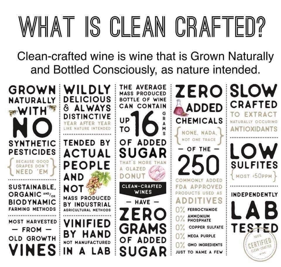 Scout & Cellar Clean Crafted wine