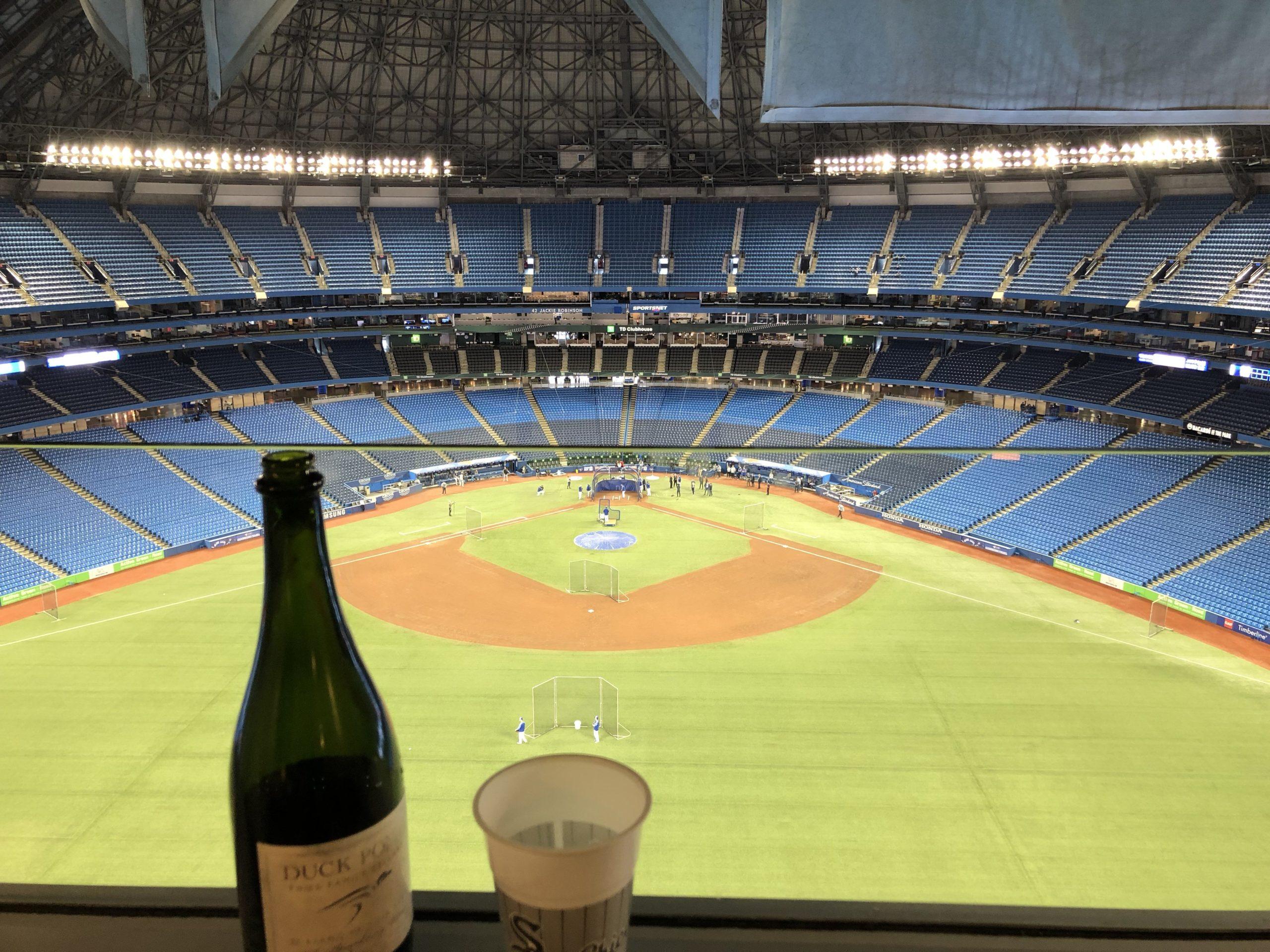Bubbly+Baseball+Birthday=Vicki's Bubbly Side of Life