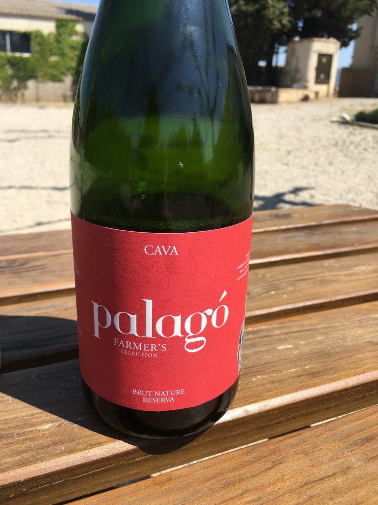 Cava, a bubbly wine from Barcelona