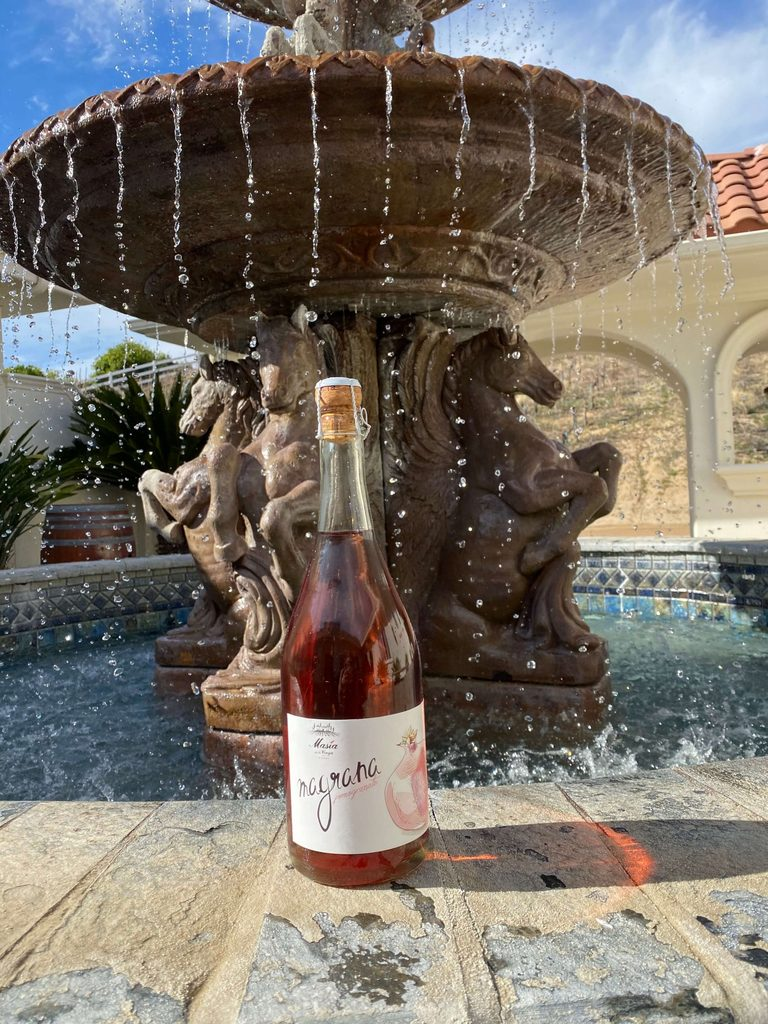 Masia de la Vinya, a Temecula Wine Country winery