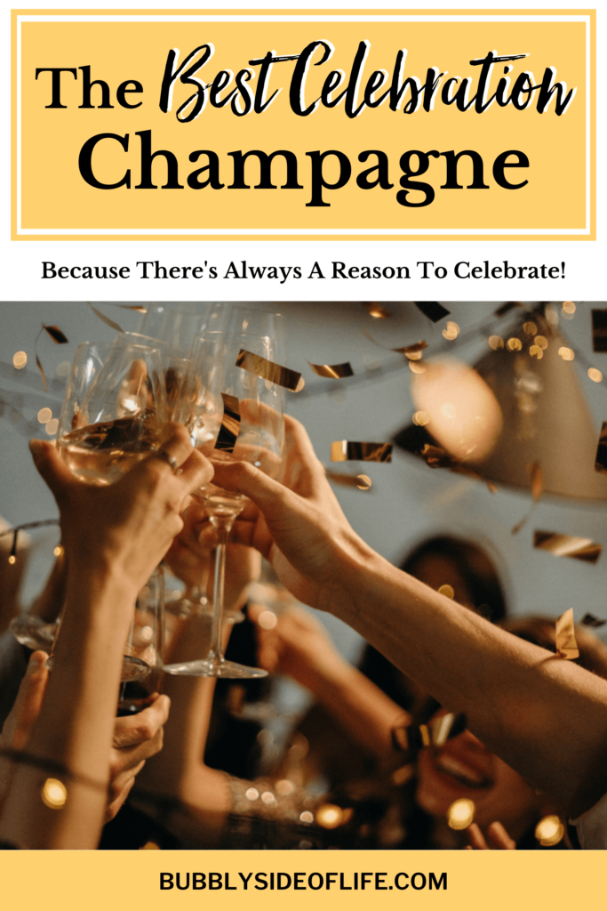 Whether you are hosting New Year's Eve, Christmas, a Bridal Shower, or Birthday - here are the best champagnes for your celebration! #champagne #party