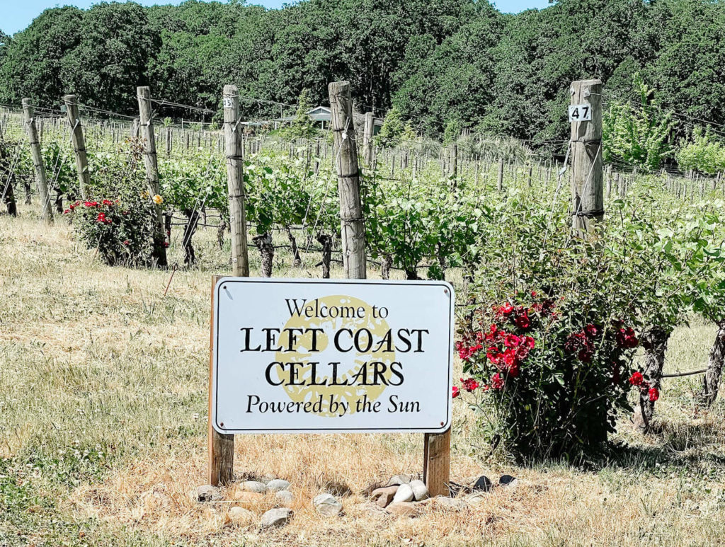 Left Coast Cellars, a must visit and you better book an entire afternoon!