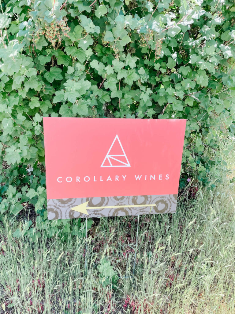 Corollary Wines, the new kid on the Willamette Valley block.