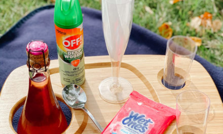Easy Ways To Create A Simple Picnic